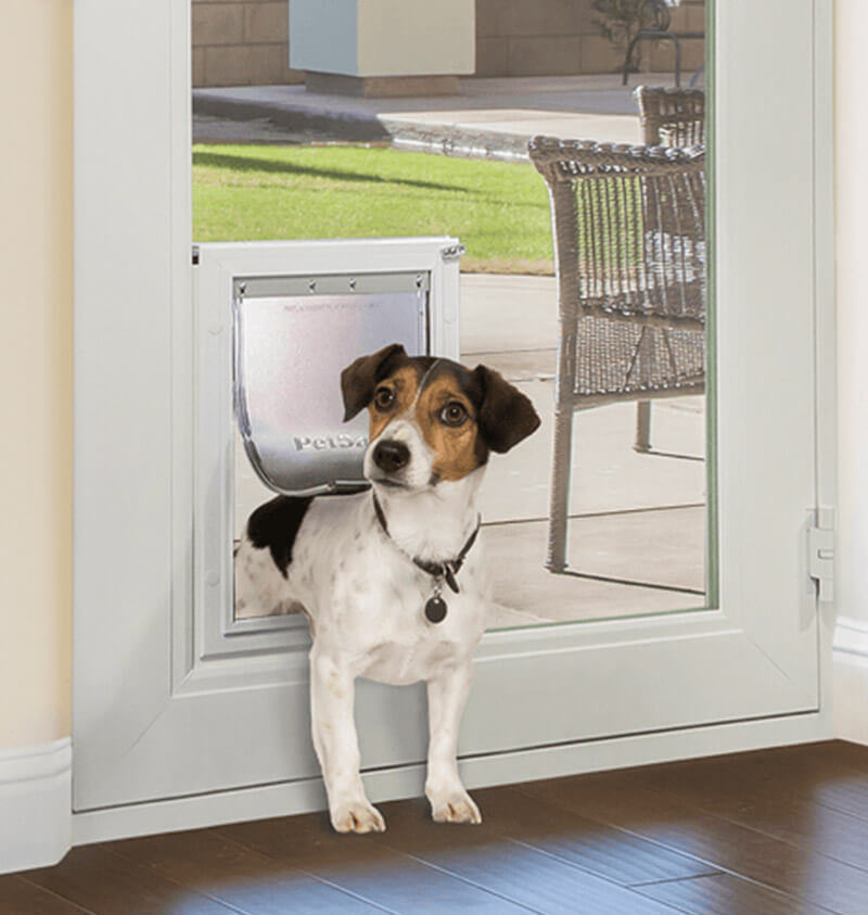 exterior door with dog door